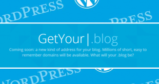 rp-wordpress-blog-domain-name